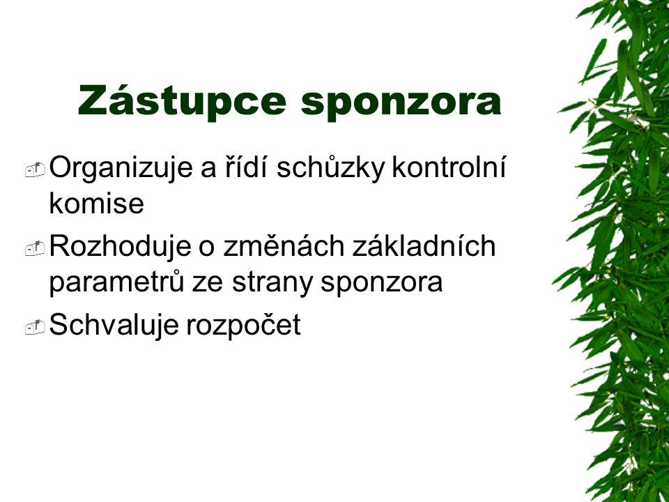Zástupce sponzora Organizuje a řídí schůzky kontrolní komise