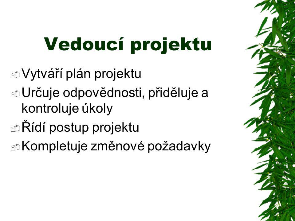 Vedoucí projektu Vytváří plán projektu