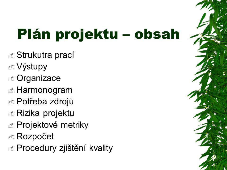 Plán projektu – obsah Strukutra prací Výstupy Organizace Harmonogram