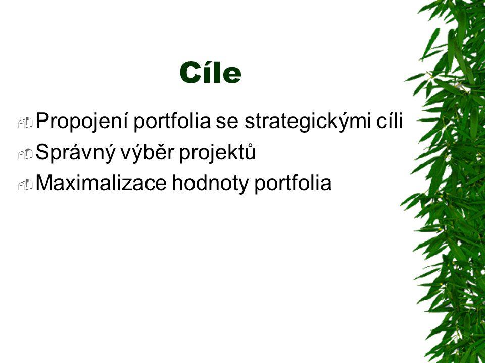 Cíle Propojení portfolia se strategickými cíli Správný výběr projektů
