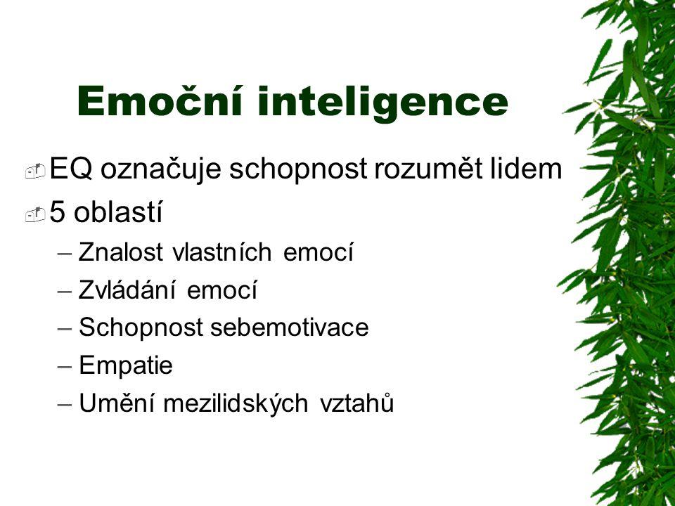 Emoční inteligence EQ označuje schopnost rozumět lidem 5 oblastí