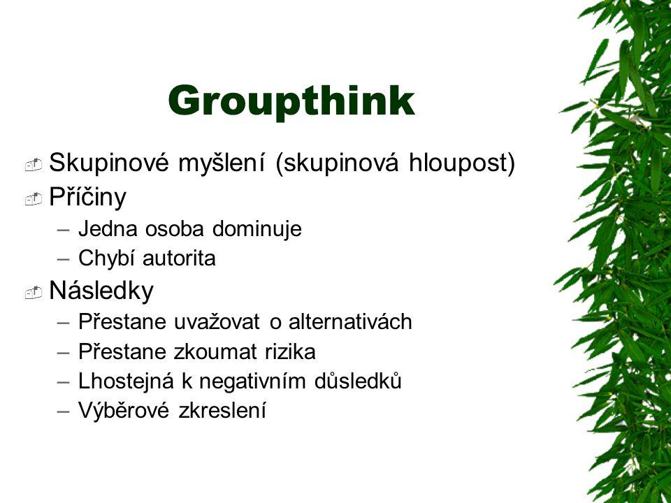 Groupthink Skupinové myšlení (skupinová hloupost) Příčiny Následky