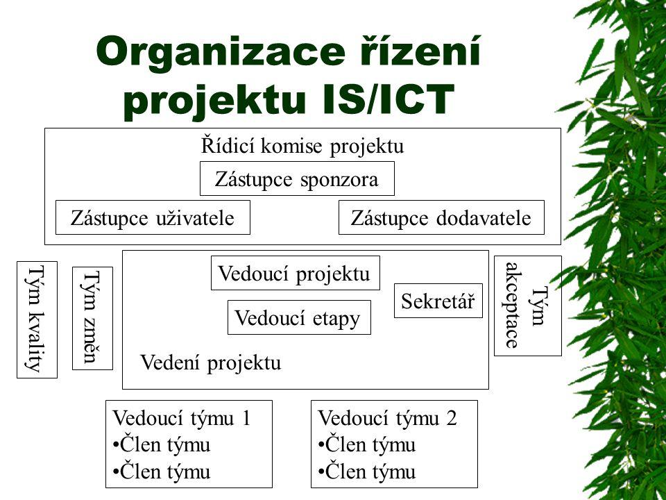 Organizace řízení projektu IS/ICT