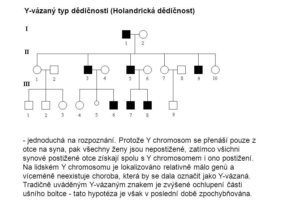 Y-vázaný typ dědičnosti (Holandrická dědičnost)