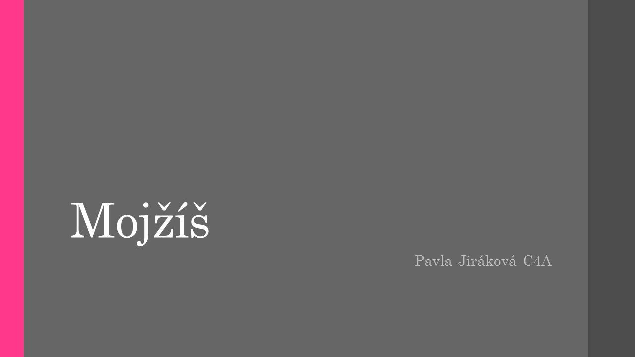 Mojžíš Pavla Jiráková C4A