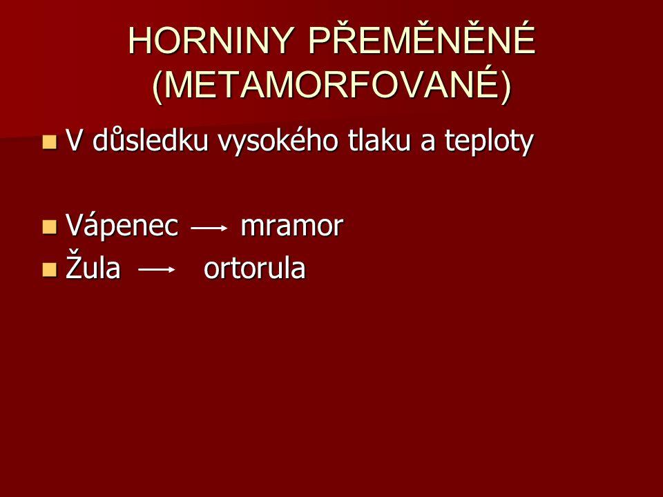 HORNINY PŘEMĚNĚNÉ (METAMORFOVANÉ)