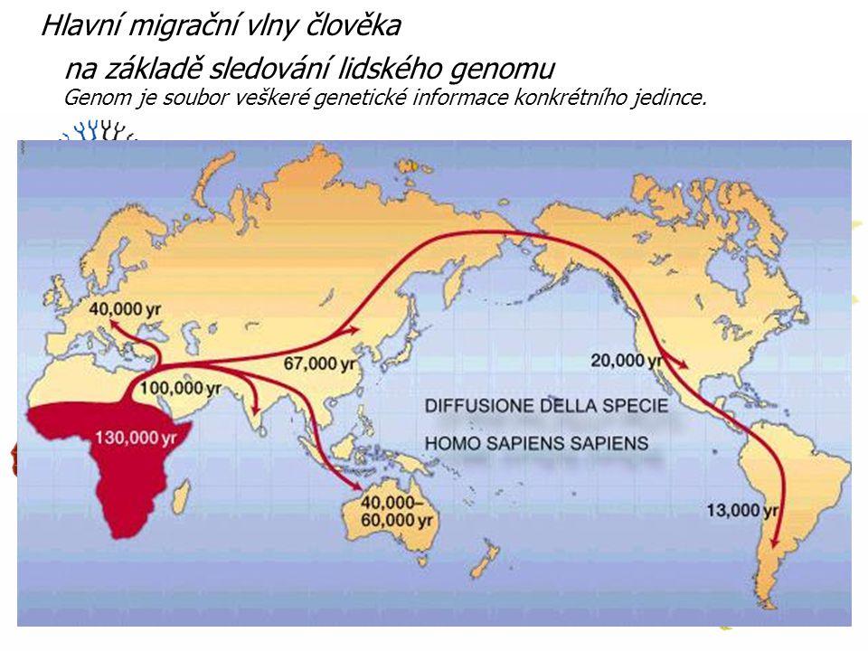 Hlavní migrační vlny člověka