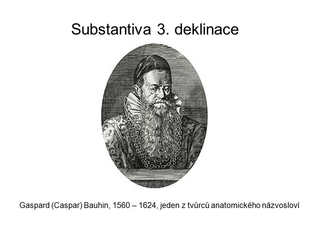 Substantiva 3. deklinace