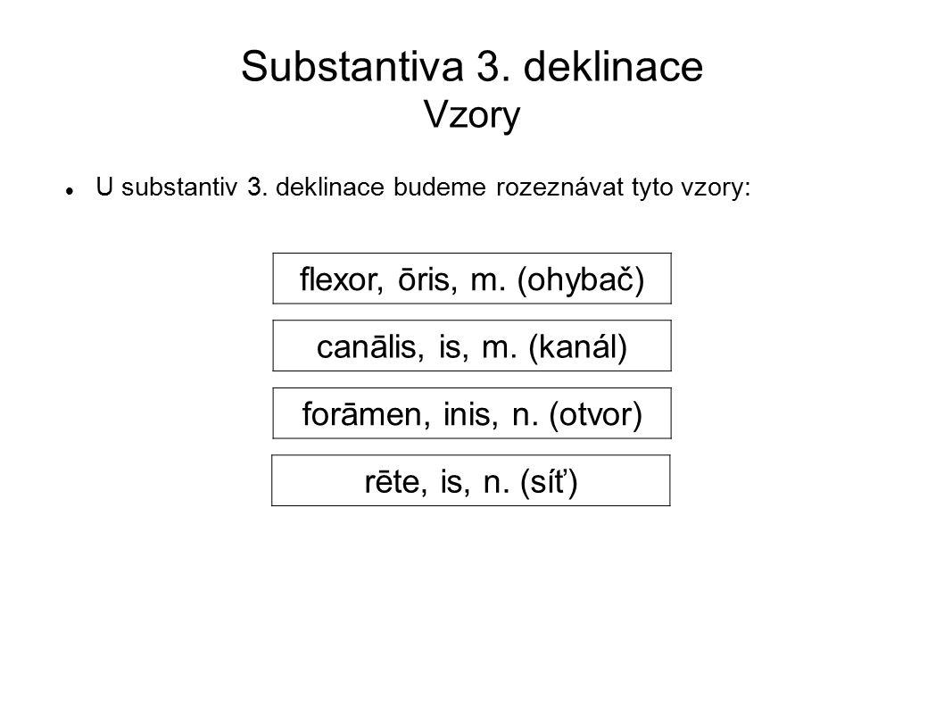 Substantiva 3. deklinace Vzory
