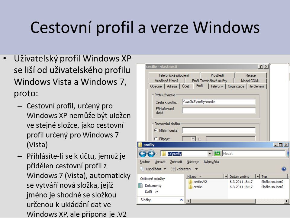 Cestovní profil a verze Windows