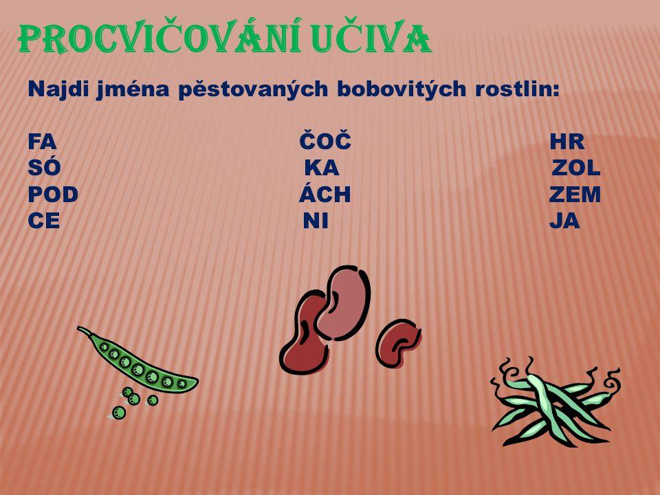 PROCVIČOVÁnÍ UČIVA Najdi jména pěstovaných bobovitých rostlin: