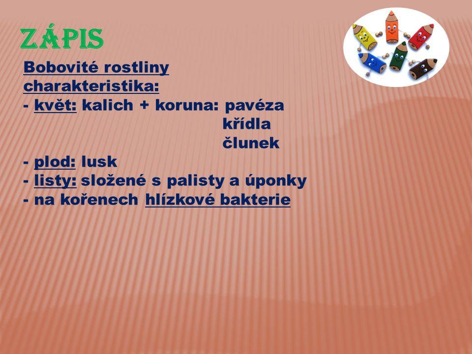 ZÁPIS Bobovité rostliny charakteristika: květ: kalich + koruna: pavéza
