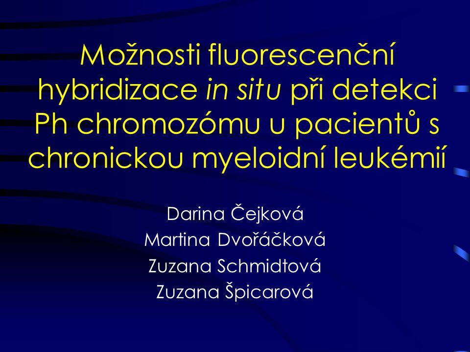 Darina Čejková Martina Dvořáčková Zuzana Schmidtová Zuzana Špicarová