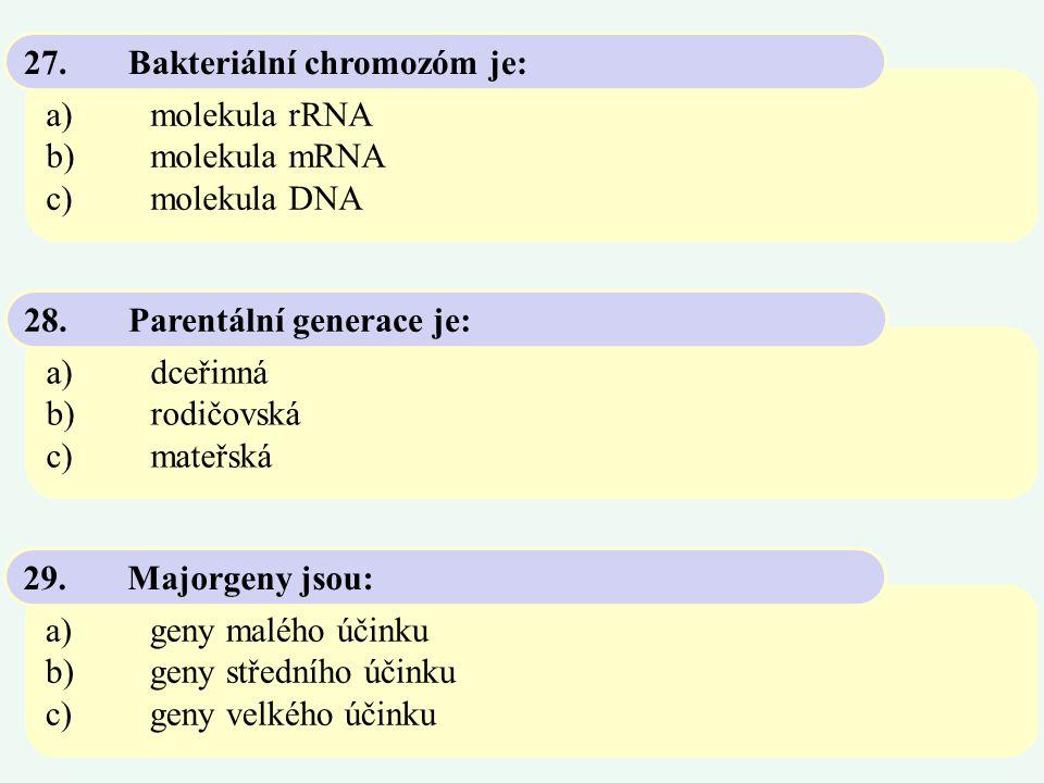 27. Bakteriální chromozóm je: