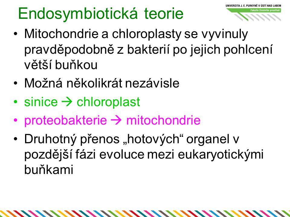 Endosymbiotická teorie