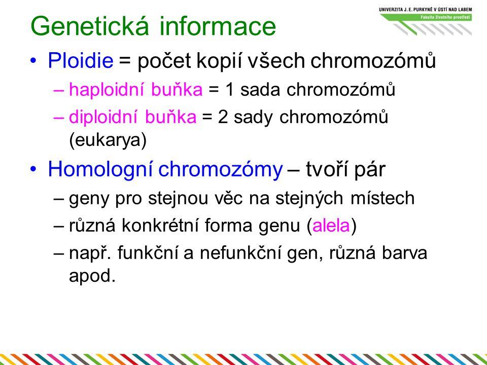 Genetická informace Ploidie = počet kopií všech chromozómů