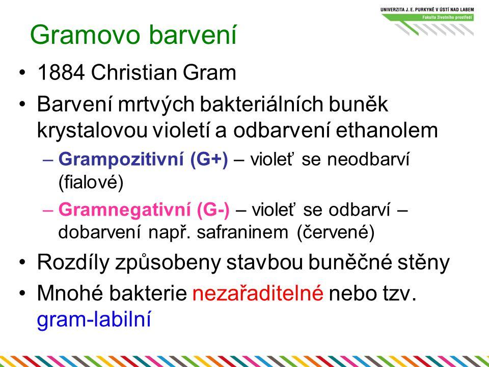 Gramovo barvení 1884 Christian Gram