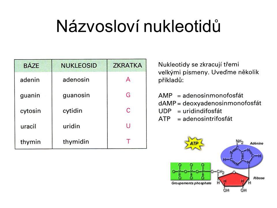 Názvosloví nukleotidů