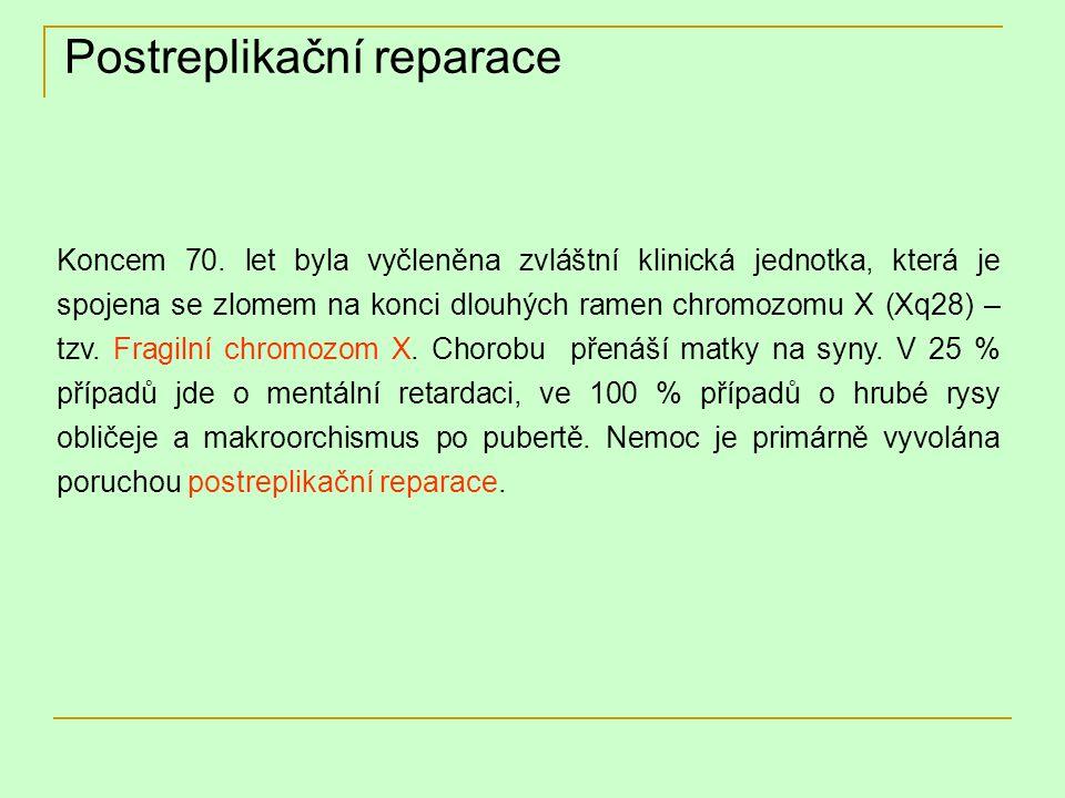 Postreplikační reparace