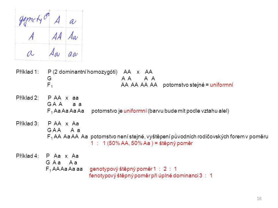 Příklad 1: P (2 dominantní homozygóti) AA x AA