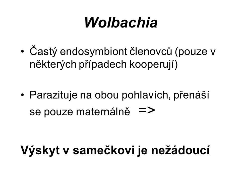Wolbachia Výskyt v samečkovi je nežádoucí
