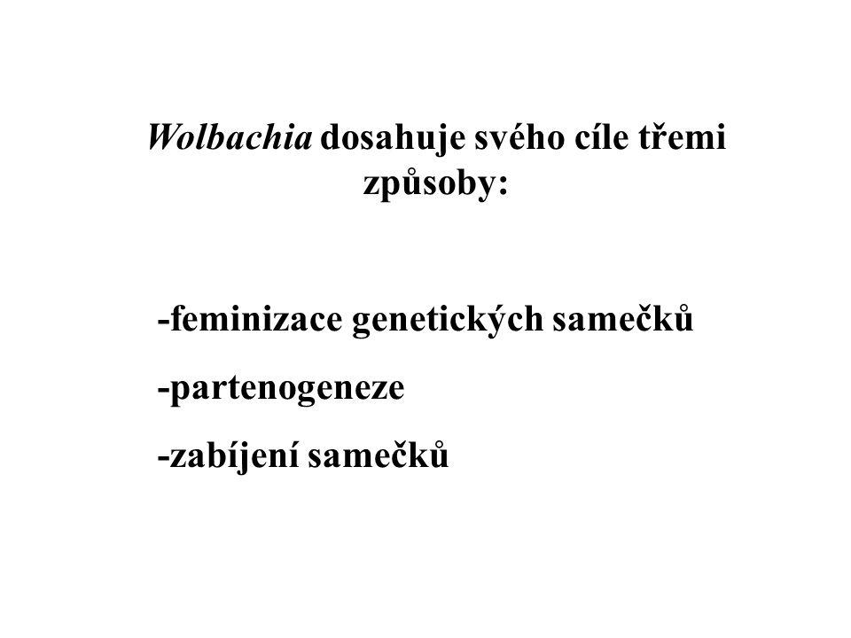Wolbachia dosahuje svého cíle třemi způsoby: