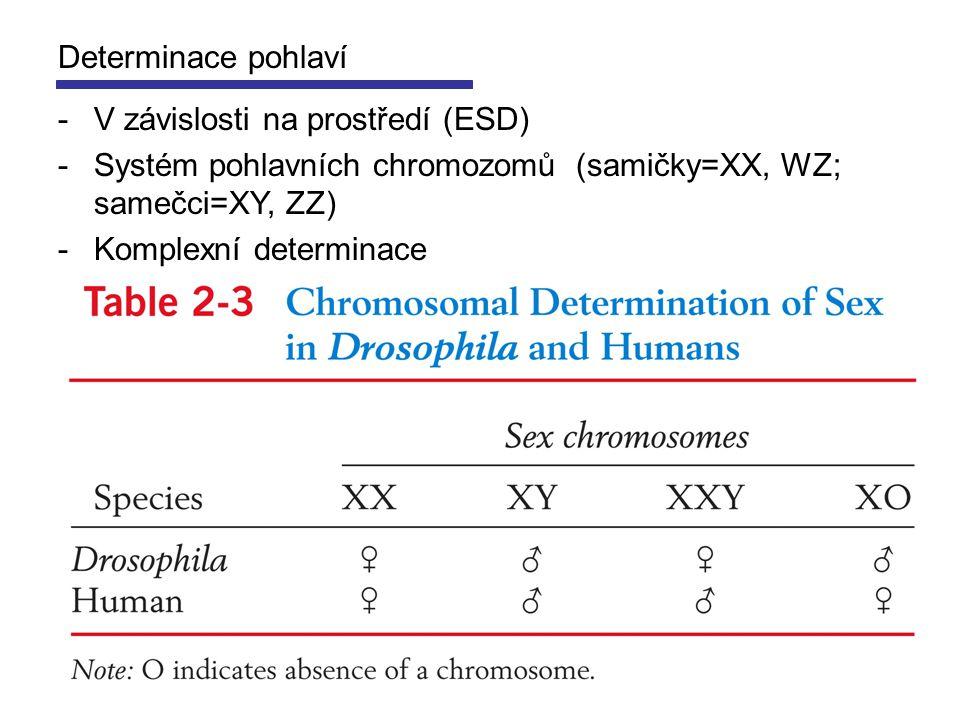 Determinace pohlaví V závislosti na prostředí (ESD) Systém pohlavních chromozomů (samičky=XX, WZ; samečci=XY, ZZ)