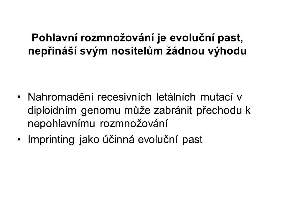 Pohlavní rozmnožování je evoluční past, nepřináší svým nositelům žádnou výhodu