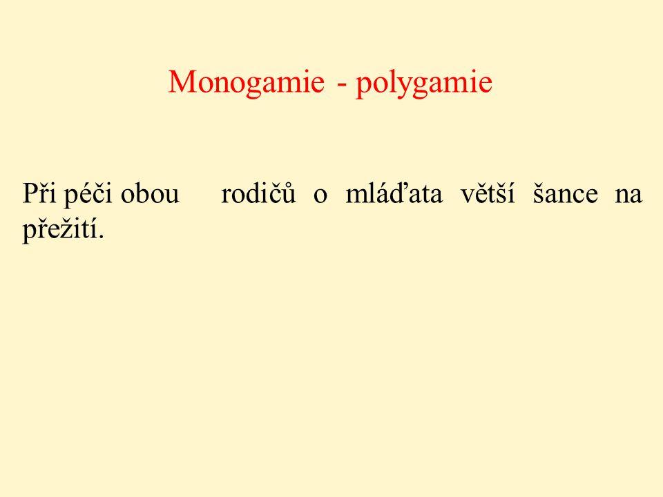 Monogamie - polygamie Při péči obou rodičů o mláďata větší šance na přežití.