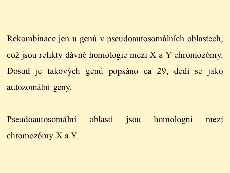 Rekombinace jen u genů v pseudoautosomálních oblastech, což jsou relikty dávné homologie mezi X a Y chromozómy. Dosud je takových genů popsáno ca 29, dědí se jako autozomální geny.