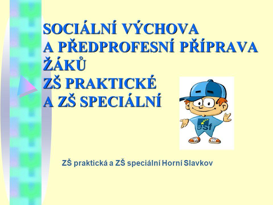 ZŠ praktická a ZŠ speciální Horní Slavkov
