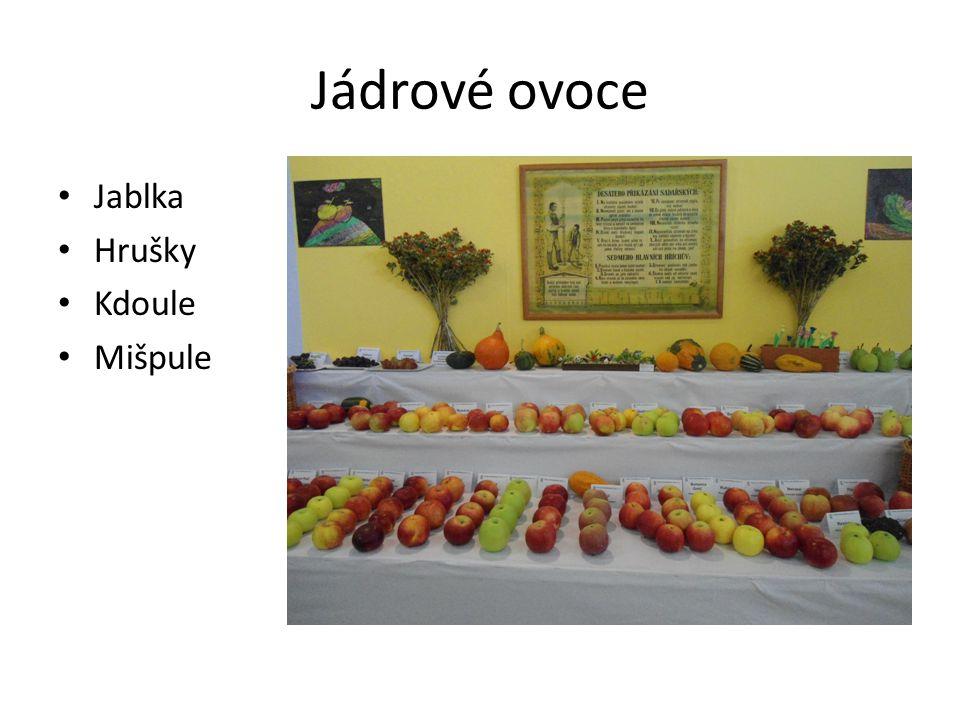Jádrové ovoce Jablka Hrušky Kdoule Mišpule