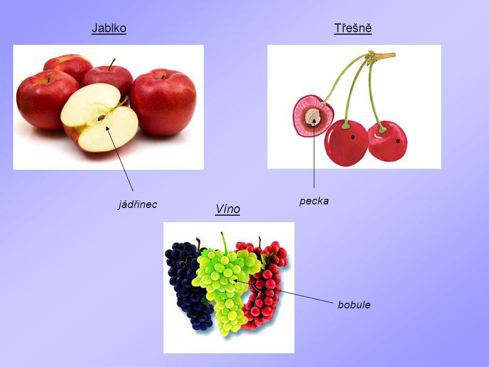 Jablko Třešně pecka jádřinec Víno bobule