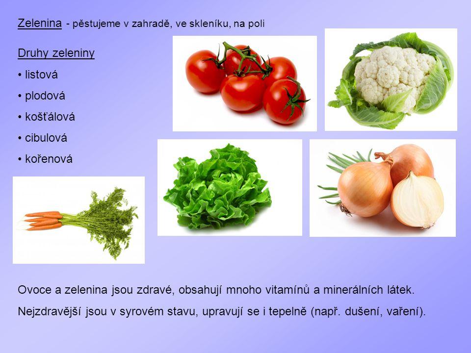 Zelenina - pěstujeme v zahradě, ve skleníku, na poli