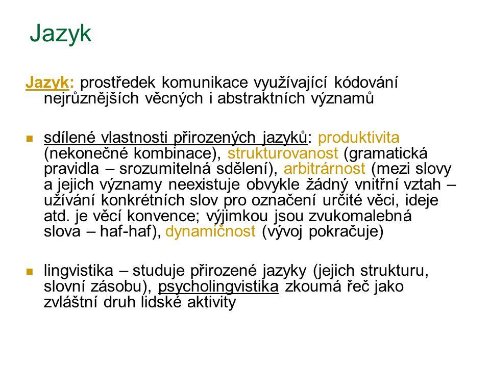 Jazyk Jazyk: prostředek komunikace využívající kódování nejrůznějších věcných i abstraktních významů.