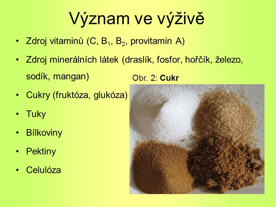 Význam ve výživě Zdroj vitaminů (C, B1, B2, provitamin A)