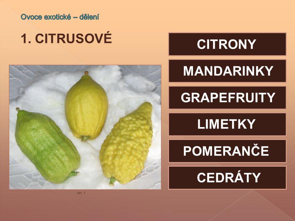 Ovoce exotické – dělení