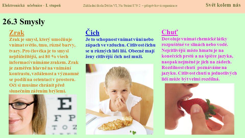 26.3 Smysly Zrak Čich Chuť Zrak je smysl, který umožňuje
