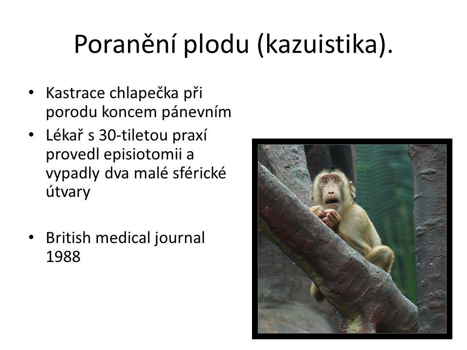 Poranění plodu (kazuistika).