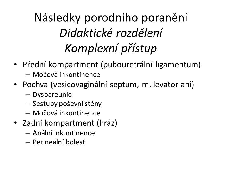 Následky porodního poranění Didaktické rozdělení Komplexní přístup