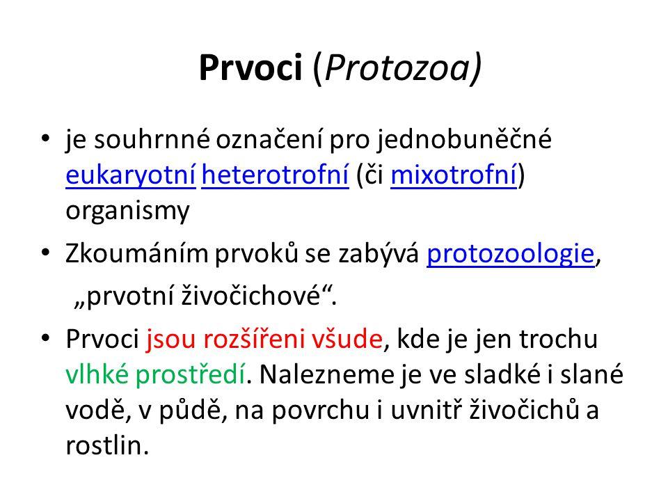 Prvoci (Protozoa) je souhrnné označení pro jednobuněčné eukaryotní heterotrofní (či mixotrofní) organismy.