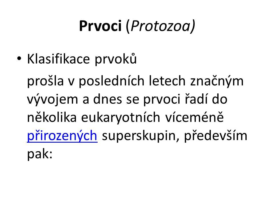 Prvoci (Protozoa) Klasifikace prvoků