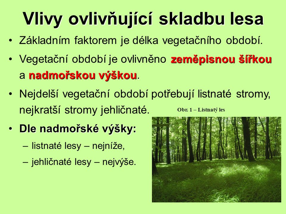 Vlivy ovlivňující skladbu lesa