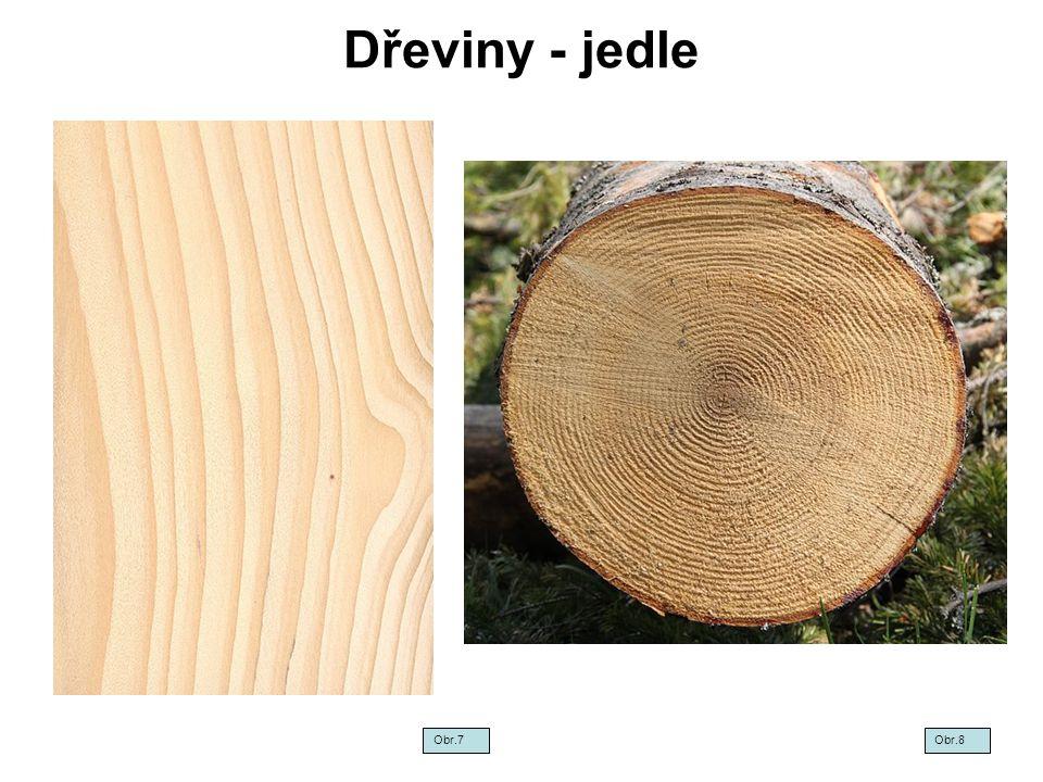 Dřeviny - jedle Obr.7 Obr.8
