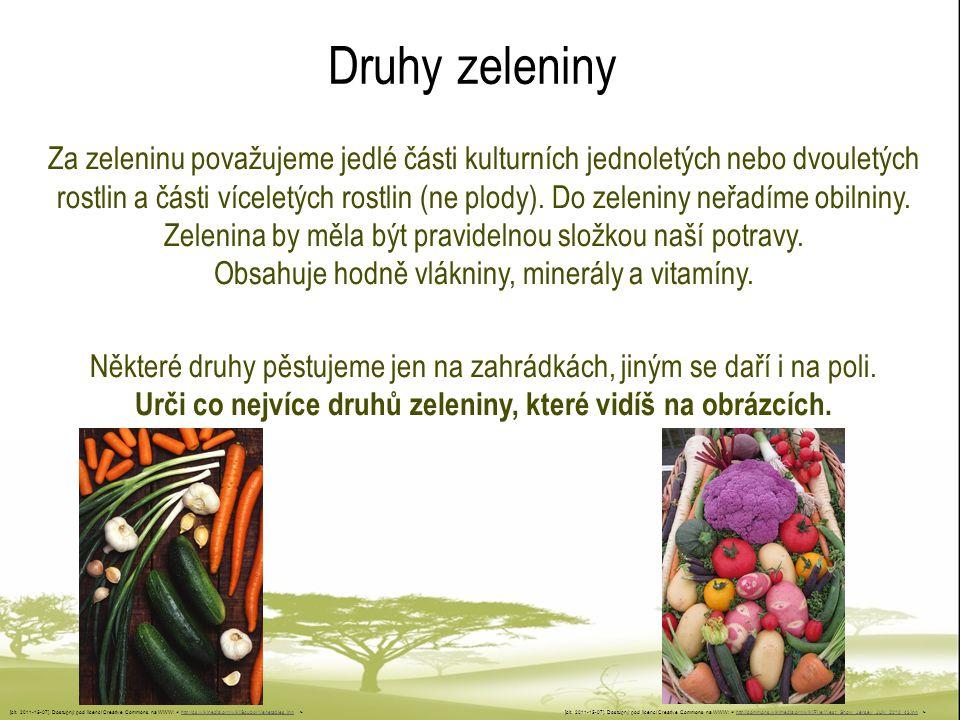Druhy zeleniny