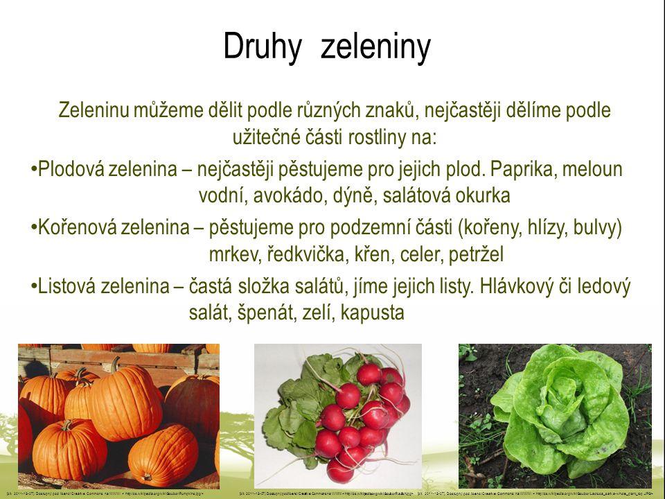 Druhy zeleniny Zeleninu můžeme dělit podle různých znaků, nejčastěji dělíme podle užitečné části rostliny na: