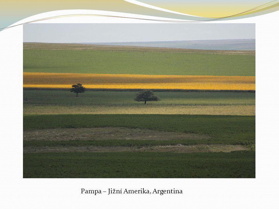 Pampa – Jižní Amerika, Argentina