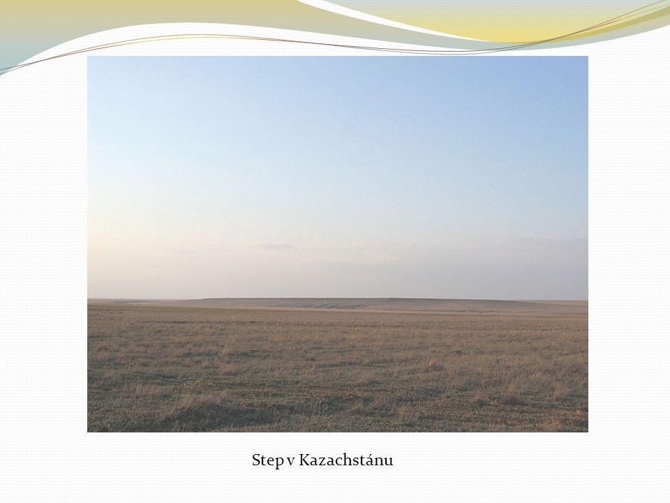 Step v Kazachstánu