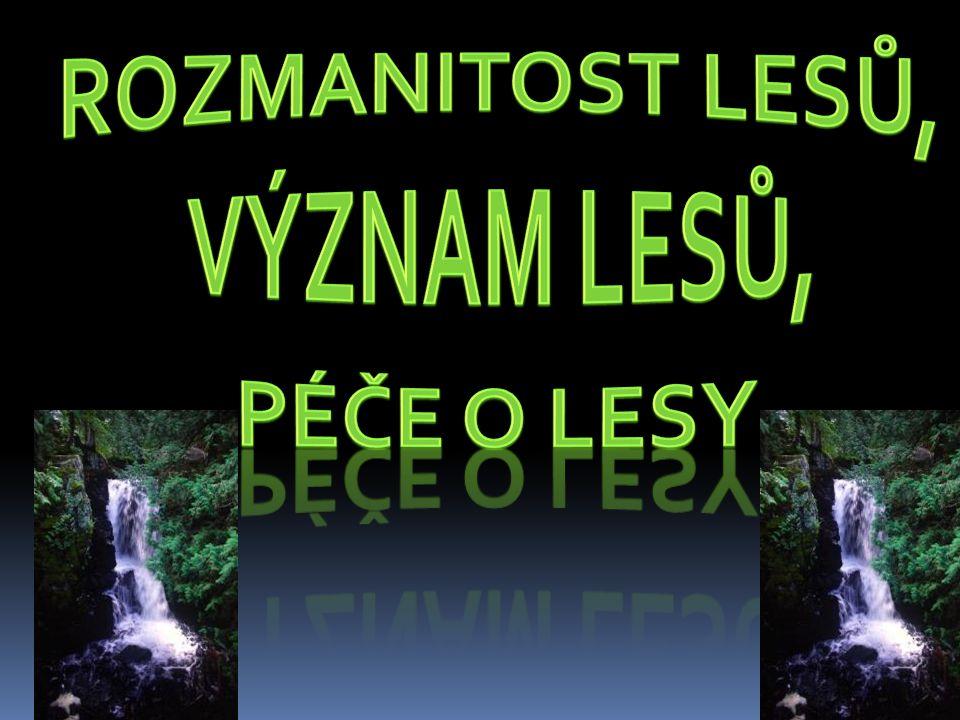 Rozmanitost lesů, Význam lesů, Péče o lesy