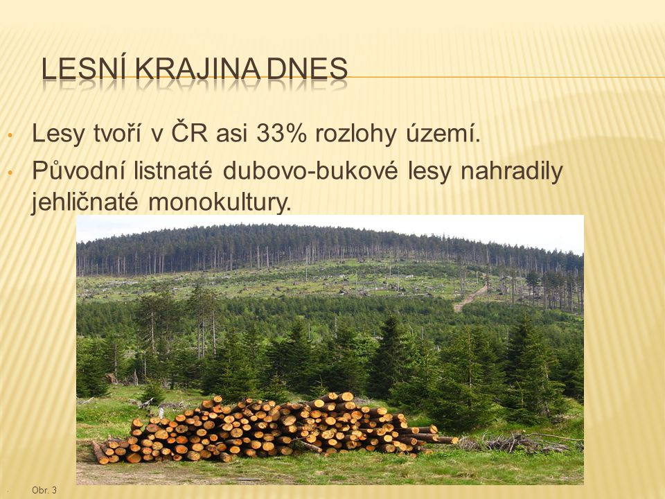 Lesní krajina dnes Lesy tvoří v ČR asi 33% rozlohy území.